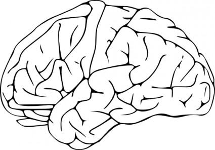 Brain frontal view clipart black and white png black and white Free Brain Drawing Cliparts, Download Free Clip Art, Free Clip Art ... png black and white