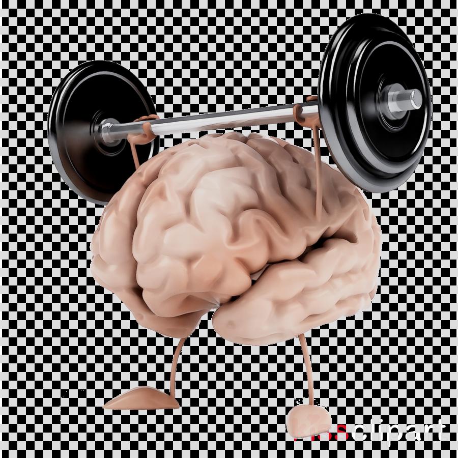 Brain muscle clipart