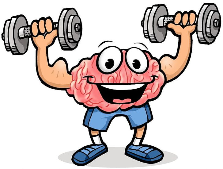 Brain muscle clipart vector freeuse download Physical Exercise Brain Cognitive Training Physical Fitness PNG ... vector freeuse download