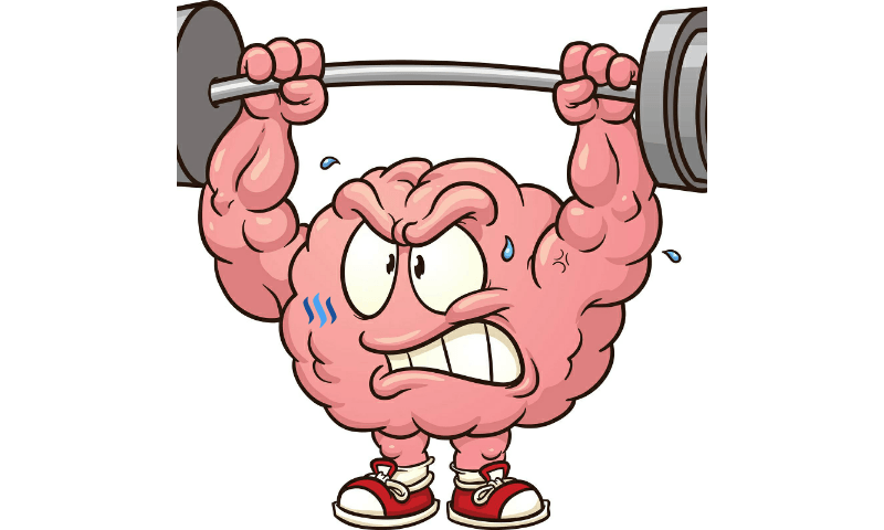Brain muscle clipart freeuse download Clipart brain muscle, Clipart brain muscle Transparent FREE for ... freeuse download