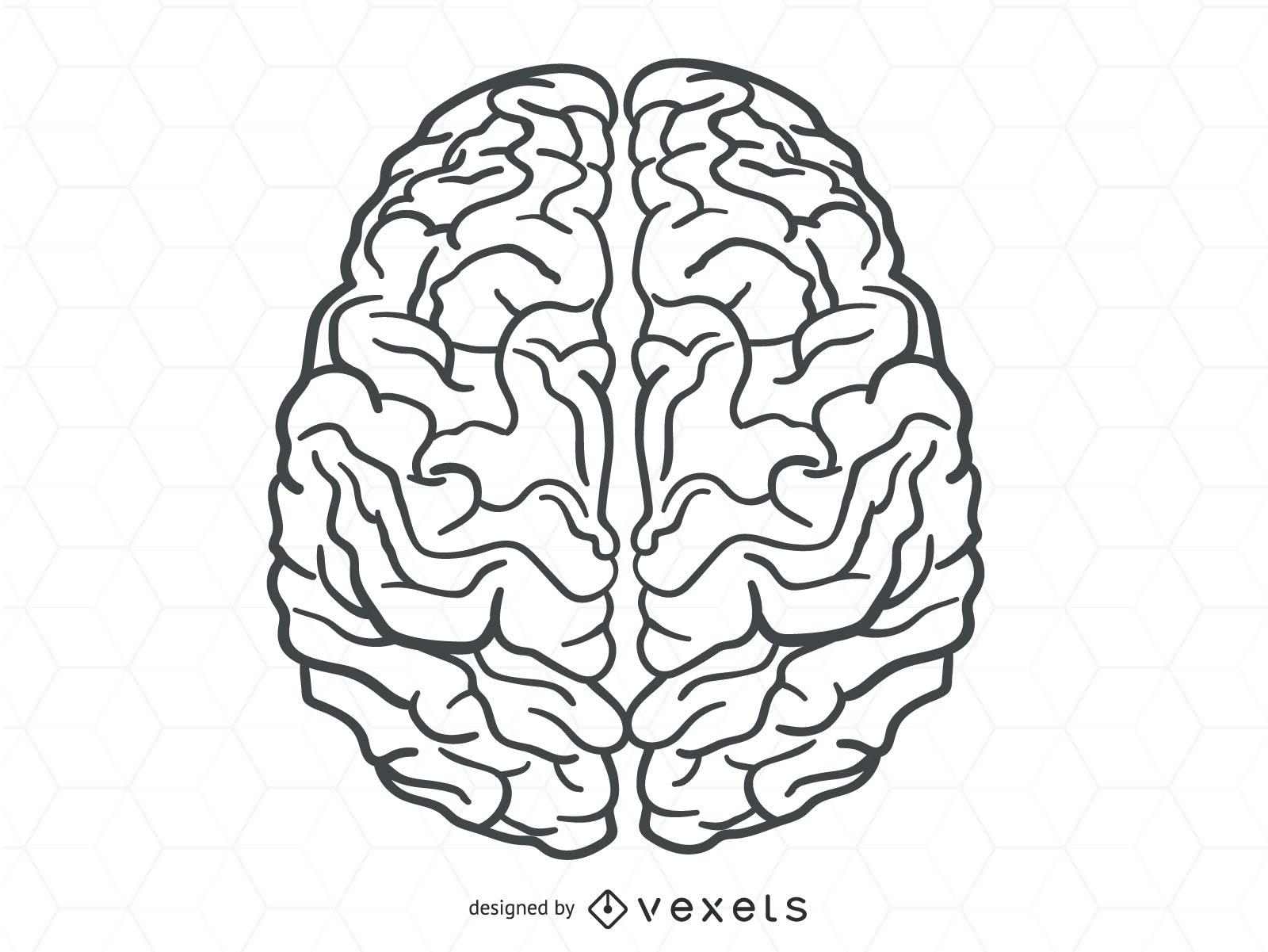 Brain nodes clipart image black and white download Human brain vector - Vector download image black and white download