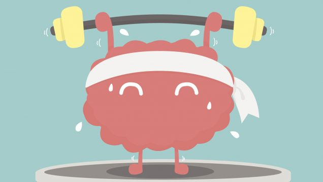 Brain working out clipart clipart free download Our Brain on Exercise » the nerve blog | Blog Archive | Boston ... clipart free download