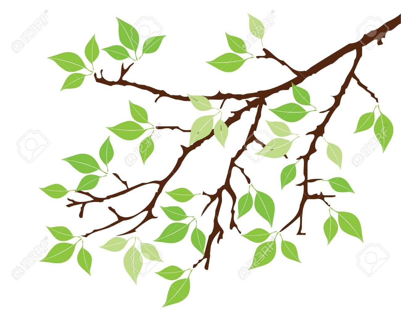 Branch clipart free graphic black and white Stock Vector | Clip Art | Vector trees, Tree stencil, Leaves vector graphic black and white