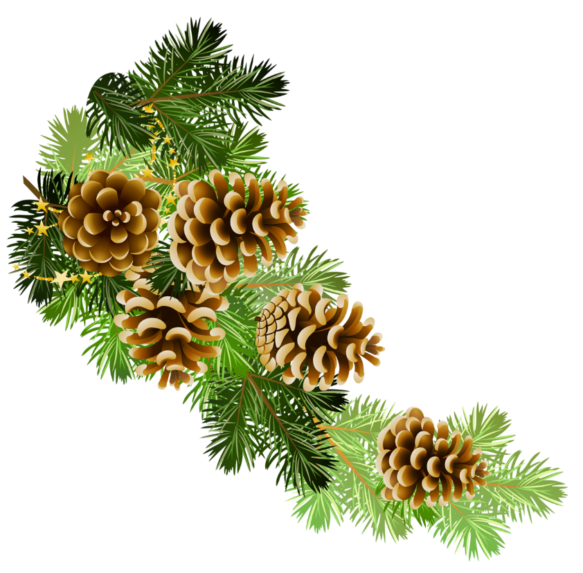 Vintage christmas border clipart clipart free download Pine and pine cones branch border clip art | Clip Art Everyday for ... clipart free download