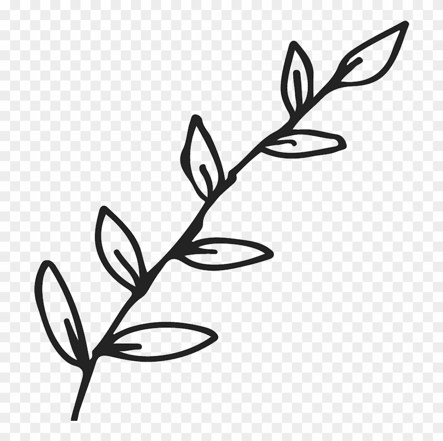 Images transparent black and white clipart leaves clip art free Jpg Black And White Stock Branch Transparent Outline - Black Leaves ... clip art free