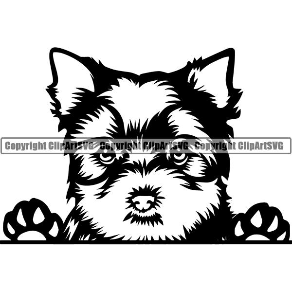 Breed clipart jpg Yorkshire Terrier Peeking Dog Breed ClipArt SVG jpg