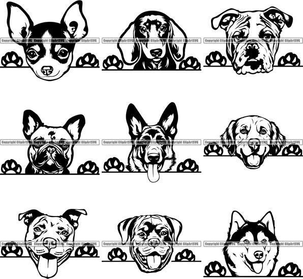 Breed clipart vector black and white library 9 WORLD FAMOUS PEEKING DOG Breed Top Selling Designs BUNDLE ClipArt SVG vector black and white library