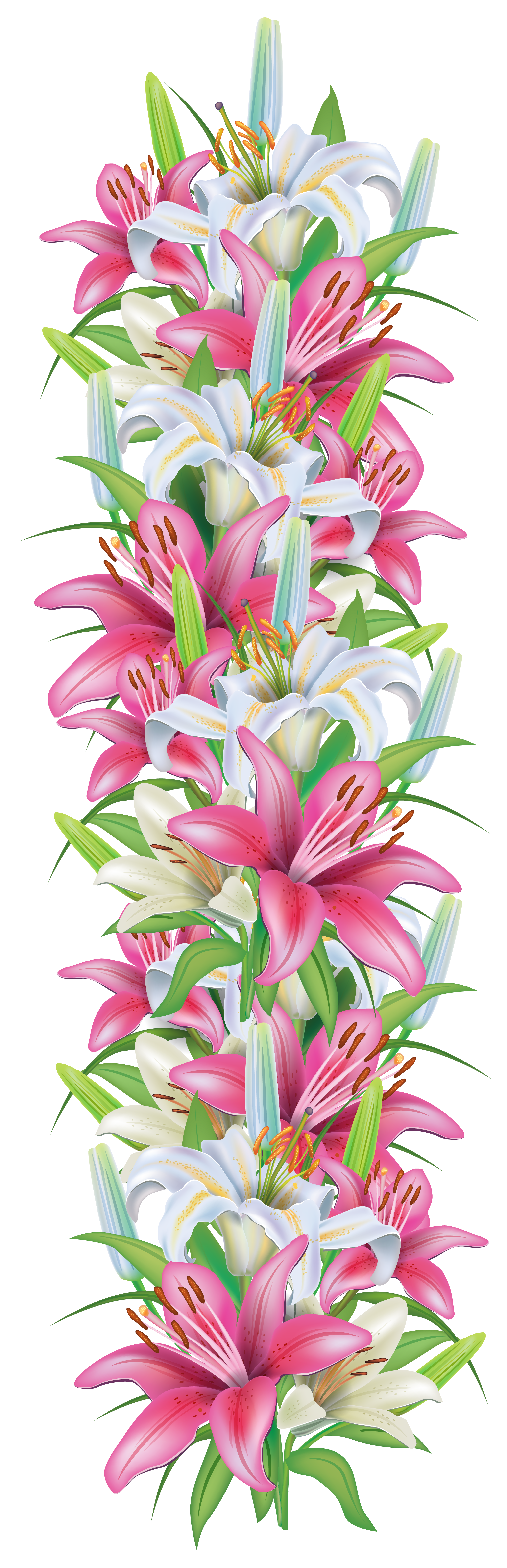 Vertical flower border clipart graphic library Pink and White Lilies Decoration Border PNG Clipart Image | Színes ... graphic library