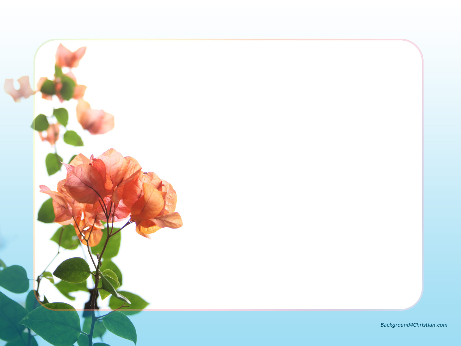 Bright flowers frame border clipart image library stock Free Bright Border Cliparts, Download Free Clip Art, Free Clip Art ... image library stock