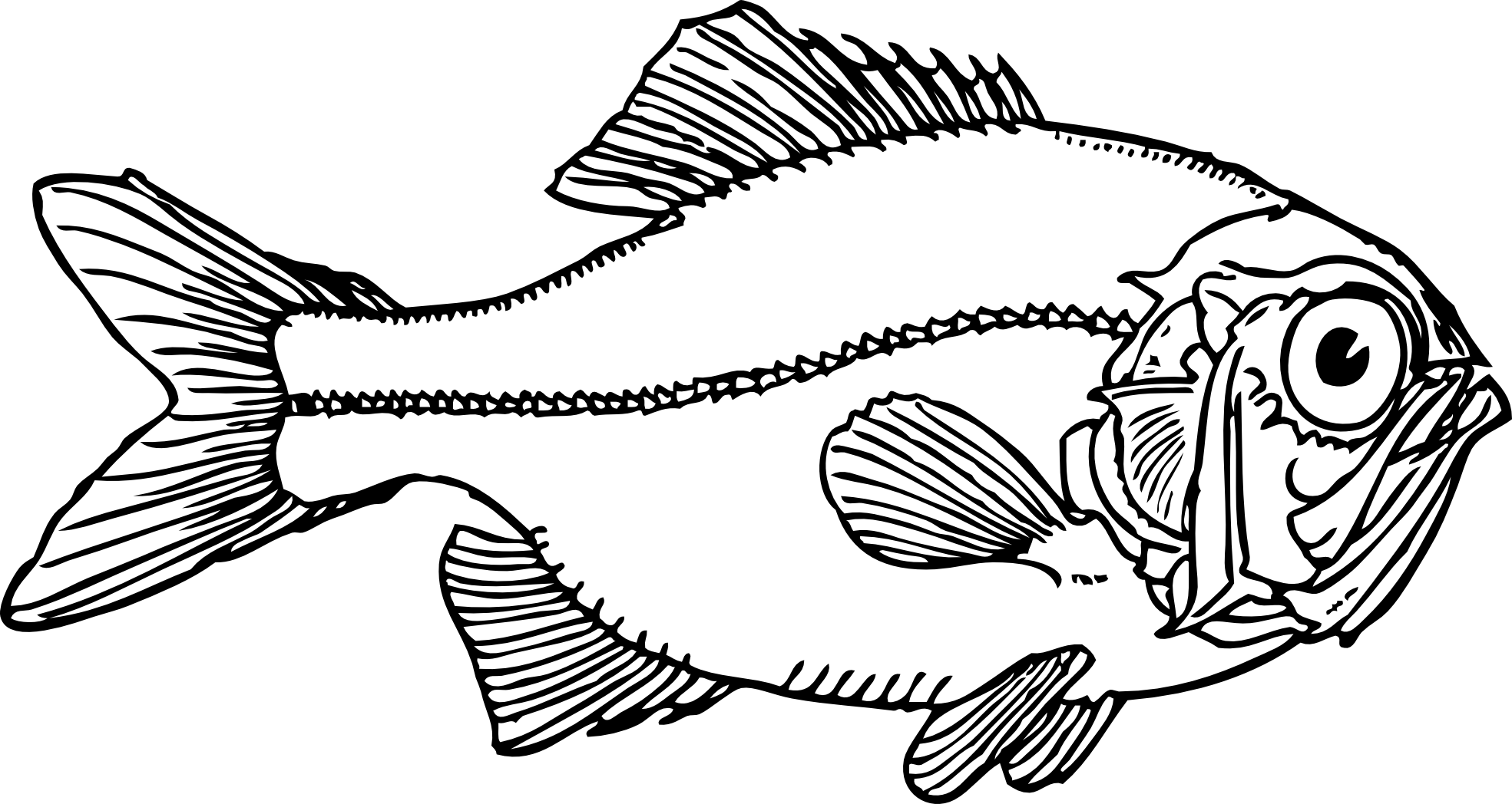 Fish fry tilapia clipart black and white.  collection of png