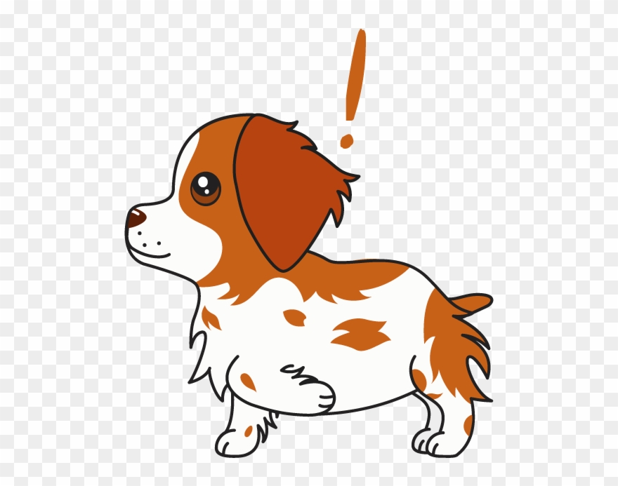 Brittany clipart svg transparent download Honey The Brittany Spaniel Messages Sticker-9 Clipart (#2854033 ... svg transparent download