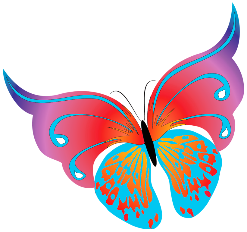 Turkey leg page border clipart picture royalty free library Painted Transparent Butterfly PNG Clipart | Photoscape Tubes Scrap ... picture royalty free library