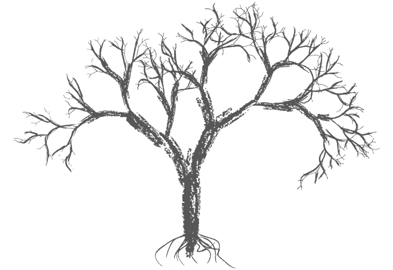 Simple bare tree clipart free library Bare Trees Drawing at GetDrawings.com | Free for personal use Bare ... free library