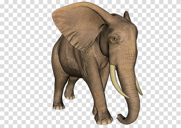 Brown clipart elephant png black and white library Elephants of , brown elephant transparent background PNG clipart ... png black and white library