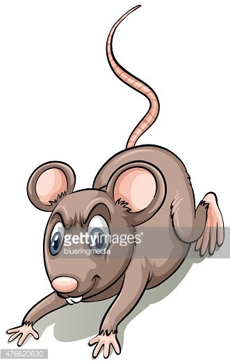 Brown rat clipart