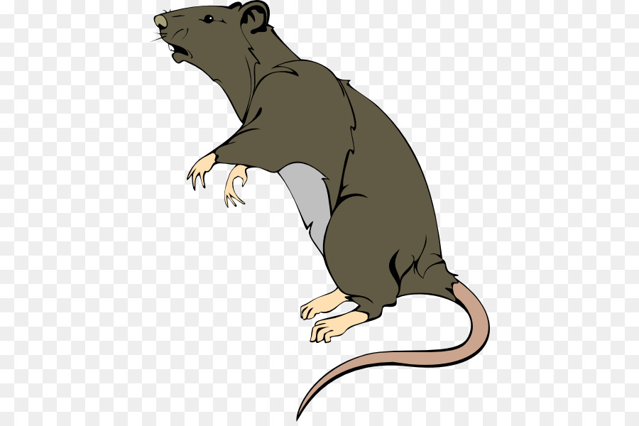 Brown rat clipart picture stock Beaver Cartoon png download - 480*594 - Free Transparent Brown Rat ... picture stock