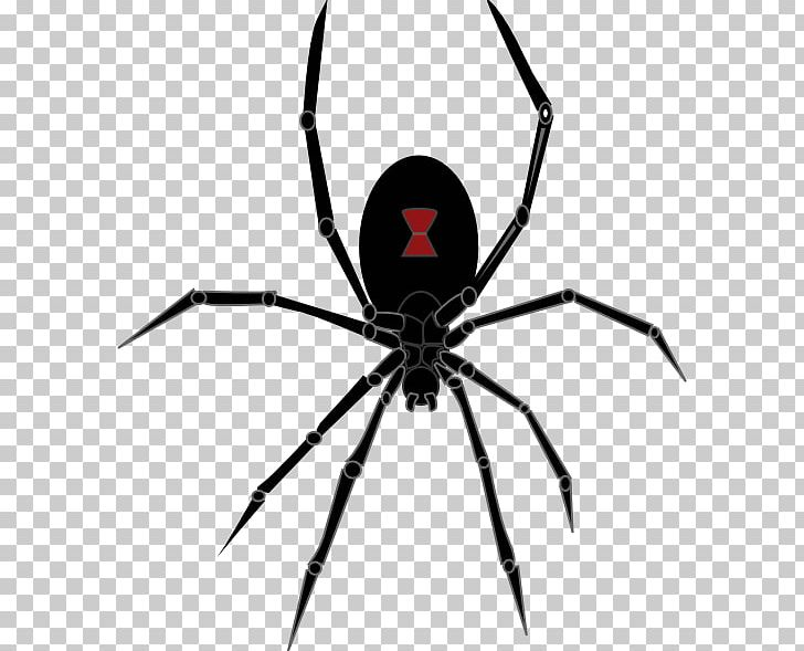 Brown recluse spider clipart black and white clip transparent download Redback Spider Southern Black Widow PNG, Clipart, Arachnid ... clip transparent download
