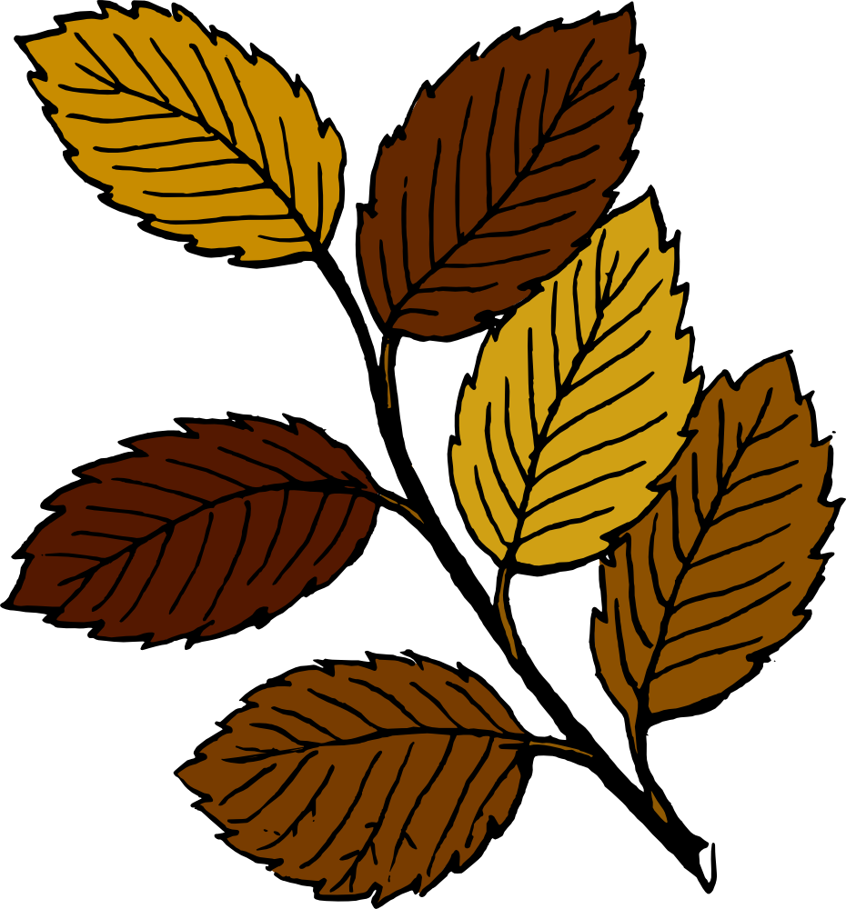 Clipart fall tree clip art transparent library Clip Art Brown Tree Branches | Clipart Panda - Free Clipart Images clip art transparent library