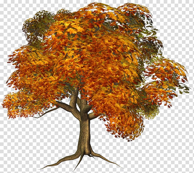 Brown yellow berries fall branch png clipart vector download Yellow tree illustration, Tree Autumn , Large Fall Tree transparent ... vector download
