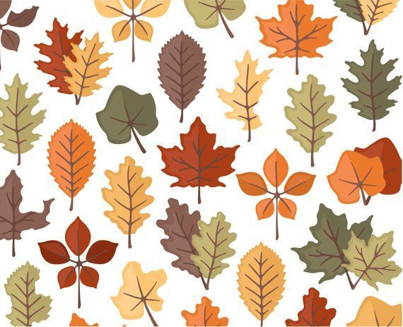 Brown yellow berries fall branch png clipart picture freeuse library Autumn Leaves Clipart, Fall Clipart, Thanksgiving Clipart, Nature ... picture freeuse library