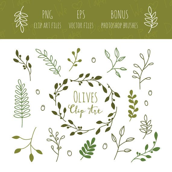 Brush clipart photoshop clip Olive Branches Clip Art, EPS And Bonus Photoshop Brushes #2363834 ... clip
