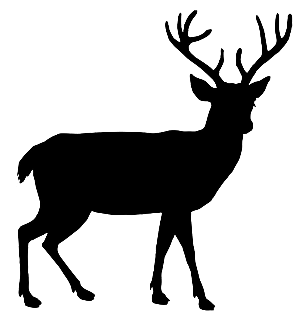 Buck and doe heart clipart jpg royalty free Red Deer Silhouette at GetDrawings.com | Free for personal use Red ... jpg royalty free