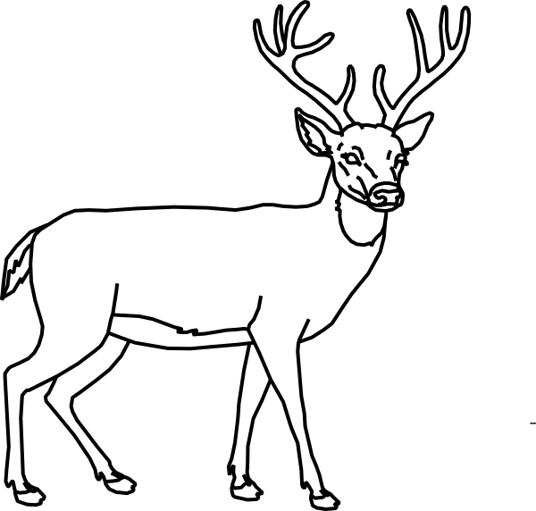 Buck clipart black and white clipart royalty free library Deer clipart black and white clipart images gallery for free ... clipart royalty free library