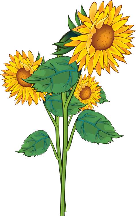 Budding flower clipart picture library library Pontiac's Rebellion: An Overview | Pinterest | Clip art, Sunflowers ... picture library library