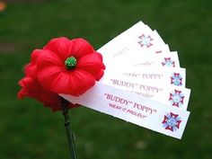 Buddy poppy drive clipart png 9 Best buddy poppy images in 2017 | Poppies, Poppy craft ... png