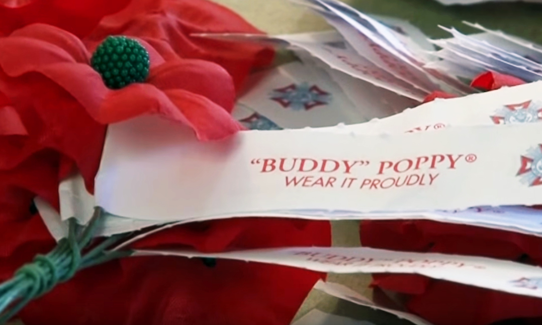 Buddy poppy drive clipart graphic royalty free library Buddy Poppy - VFW graphic royalty free library