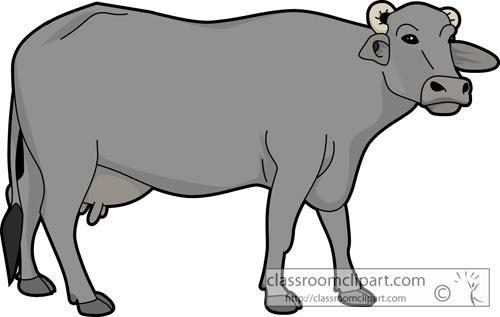 Buffalo clipart png