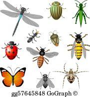 Bugs clipart free clip art stock Bugs Clip Art - Royalty Free - GoGraph clip art stock