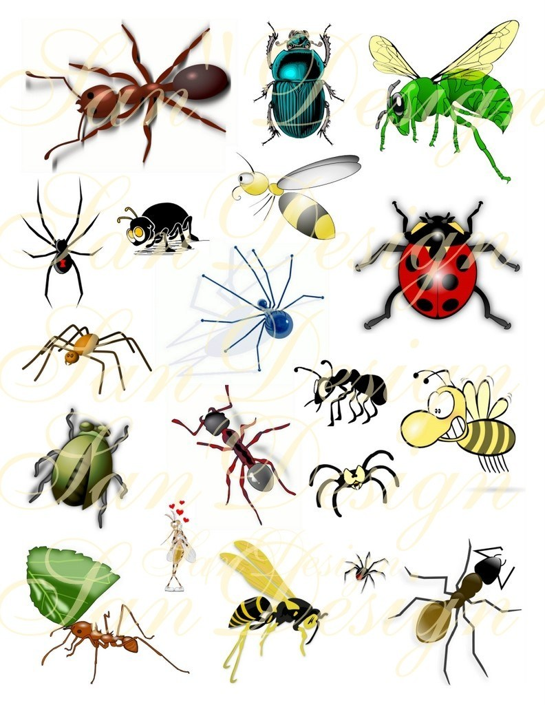 Bugs clipart free clip stock Bugs clipart free 5 » Clipart Portal clip stock