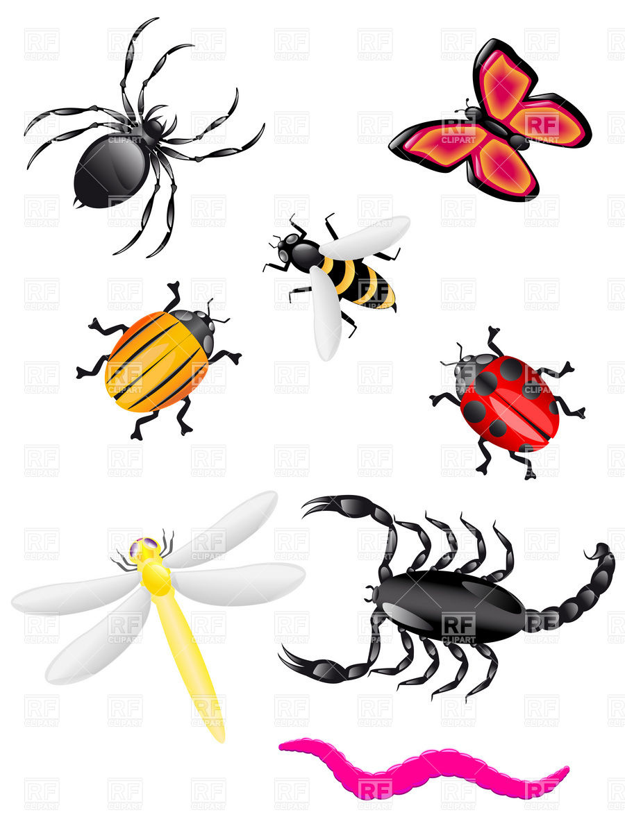 Insect clipart free png black and white Bugs and insects clipart kid 3 - Clipartix png black and white
