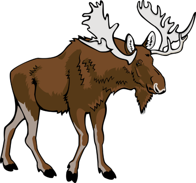 Bull moose clipart image stock Free Moose Cliparts, Download Free Clip Art, Free Clip Art on ... image stock