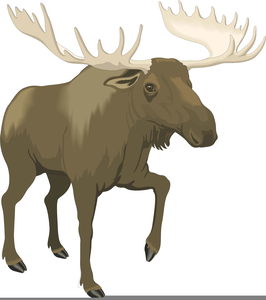 Bull moose clipart transparent stock Bull Moose Clipart | Free Images at Clker.com - vector clip art ... transparent stock