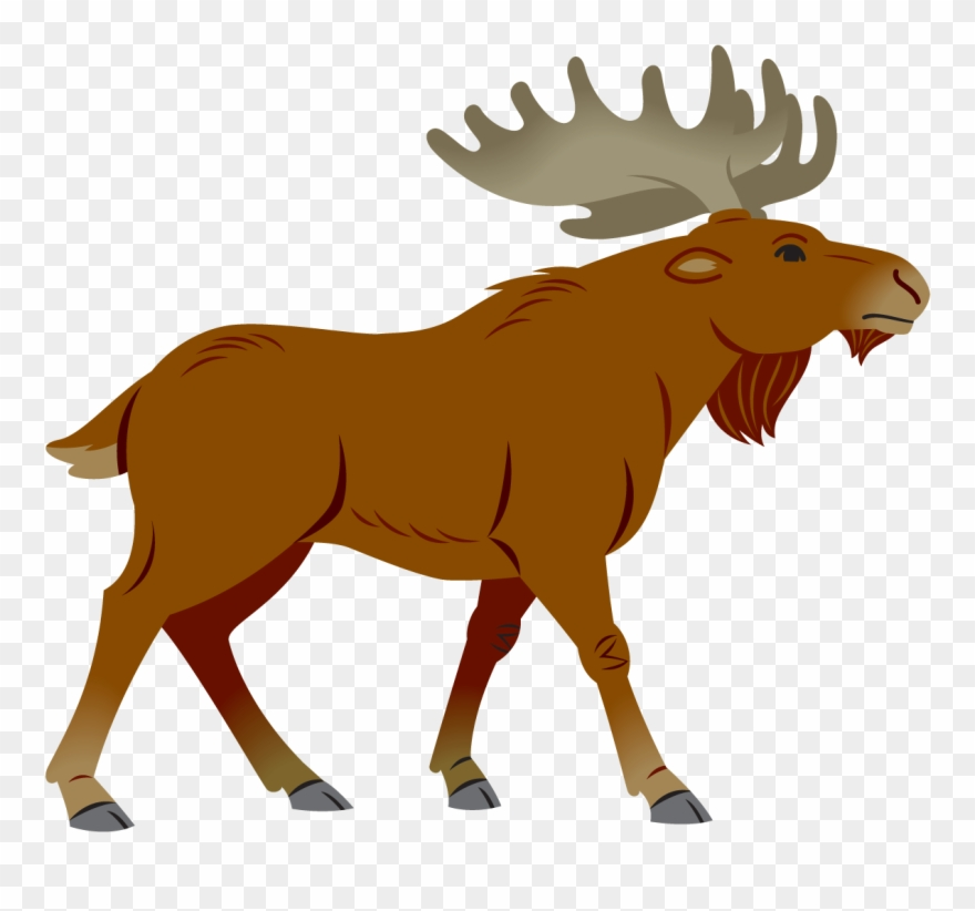 Bull moose clipart image transparent library Moose Clipart Simple Cartoon - Simple Moose Cartoon - Png Download ... image transparent library