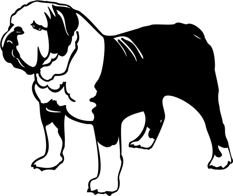 Animated Bulldog Pictures | Free Download Clip Art | Free Clip Art ... jpg transparent