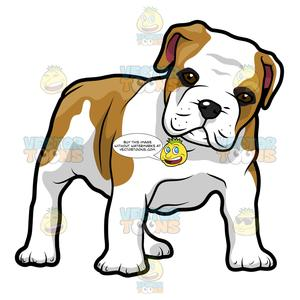 Bulldog head breaking out clipart black and white clip art black and white download English Bulldog Puppy Standing And Looking Ahead clip art black and white download