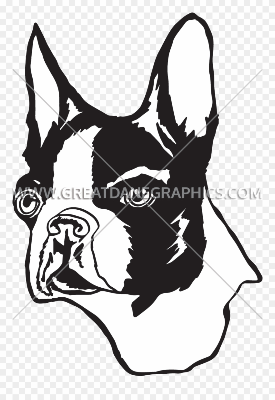 Bulldog head breaking out clipart black and white stock Head Clipart Boston Terrier - Illustration - Png Download (#626367 ... stock