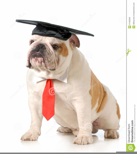 Bulldog with graduation cap clipart black and white download Graduation Bulldog Clipart | Free Images at Clker.com - vector clip ... black and white download