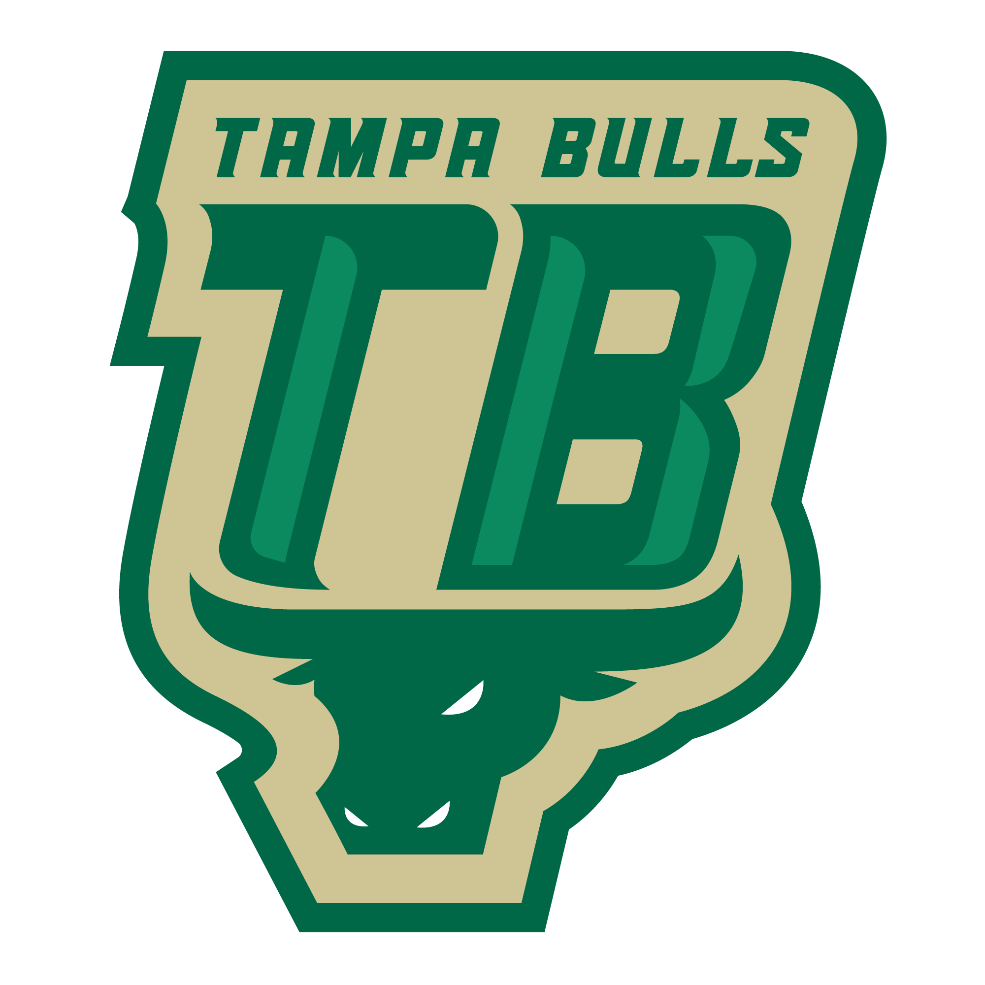 Bulls basketball clipart graphic freeuse library Who are: Tampa Bulls TBT 2017 | The Basketball Tournament graphic freeuse library