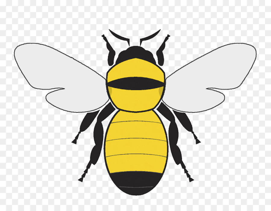 Bumble bee graphics clipart vector royalty free download Bee Cartoon png download - 815*694 - Free Transparent Bee png Download. vector royalty free download