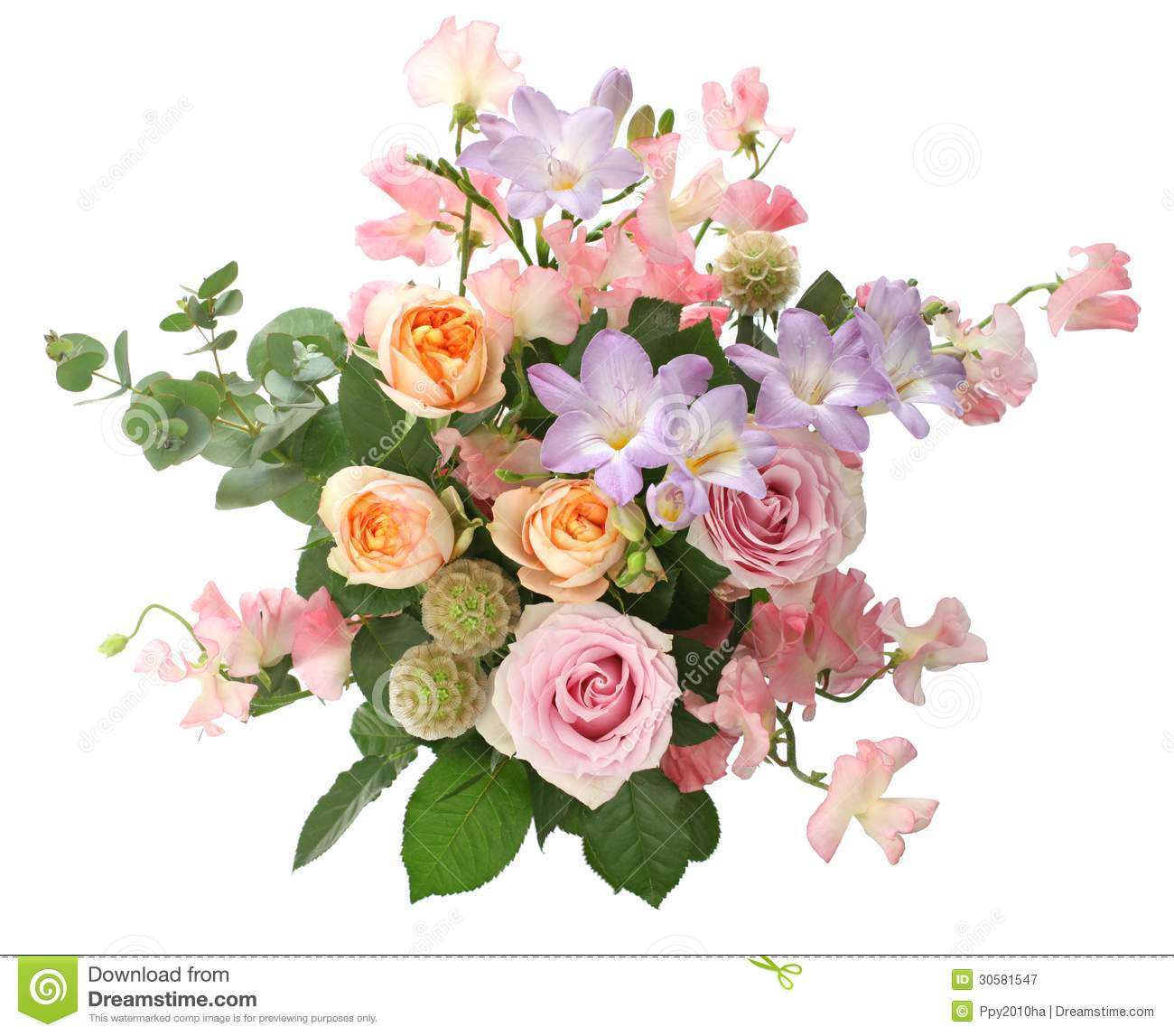 Bunch flowers images free vector free A Bunch Of Flowers Royalty Free Stock Photography - Image: 30581547 vector free