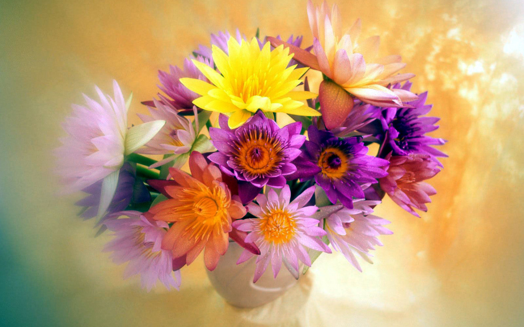 Bunch of flowers images download picture library library 1920x1200px Bunch Of Flowers Beautiful | #322649 picture library library
