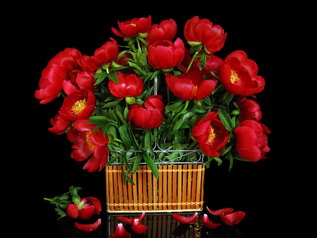 Bunch of flowers images download jpg transparent stock Free Flower Bouquet Wallpaper Download The 1024x768px | Fond noir ... jpg transparent stock