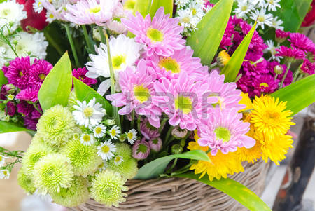 Images stock pictures royalty. Bunch of flowers picture free