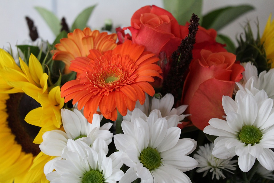 Images on pixabay bouquet. Bunch of flowers picture free