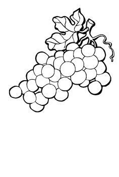 Bunch of grapes clipart black and white clip art free library Awesome Grapes Clipart Black and White – yepigames | vinogas ... clip art free library