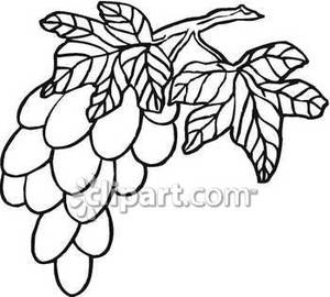 Bunch of grapes clipart black and white clipart royalty free library Big Black and White Bunch of Grapes - Royalty Free Clipart Picture clipart royalty free library